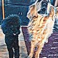 Die kleine Hanny und Kira